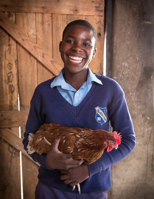"""""""Even though we had little money it was possible to return to school because of knowing Restless Development. I help feeding the chickens, taking care of them and looking after them. Then we sell the eggs at the market."""" Samantha, 15, is also a member of our layer hens project in Zimbabwe. (PC Restless Development/ Bad Rabbit Studios)"""